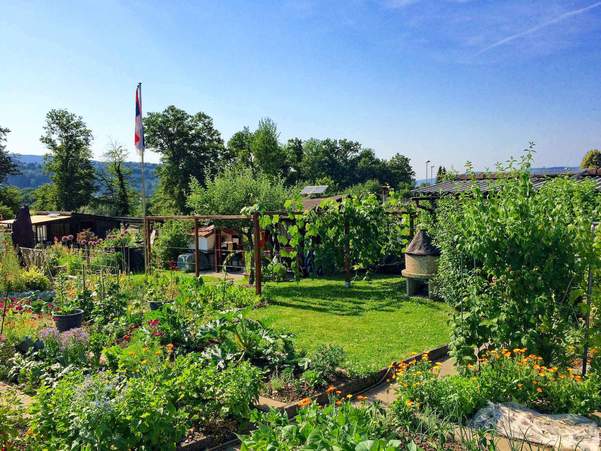 Psychological and health benefits from urban gardening